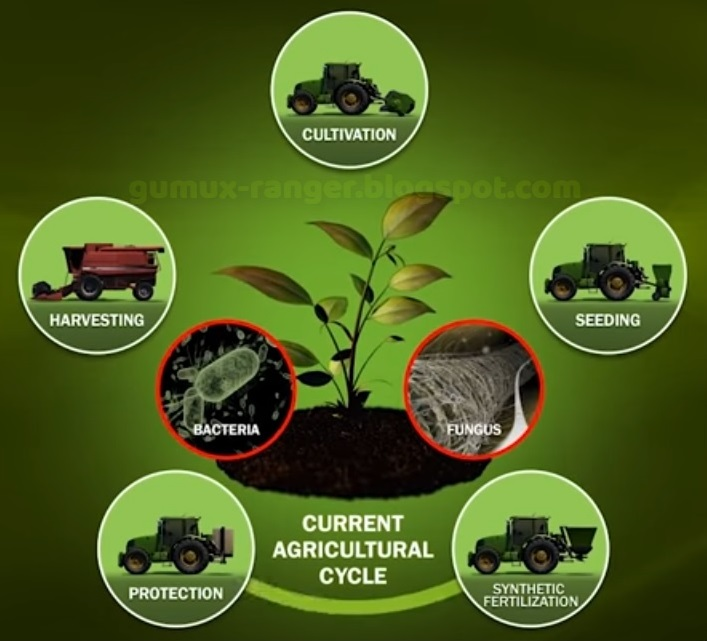 Fakta Tentang Dunia Pertanian Yang Selama ini Disembunyikan
