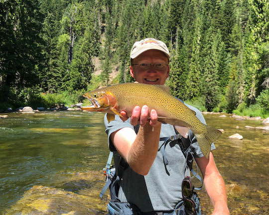 Thick westslope cutthroat trout