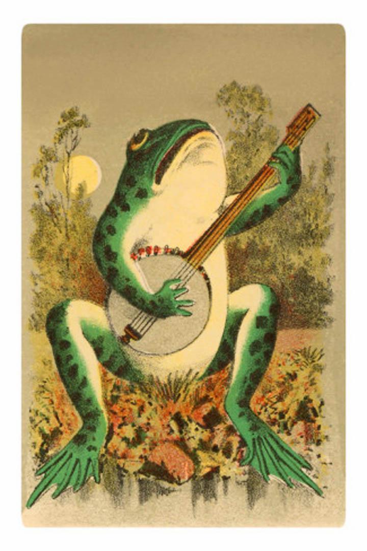 Vintage Frog 21