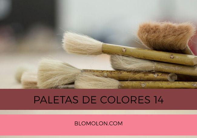 paletas_de_colores_14