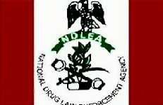 ndlea-new-salary-scale-structure
