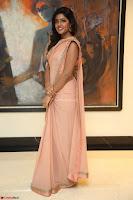 Eesha Rebba in beautiful peach saree at Darshakudu pre release ~  Exclusive Celebrities Galleries 049.JPG