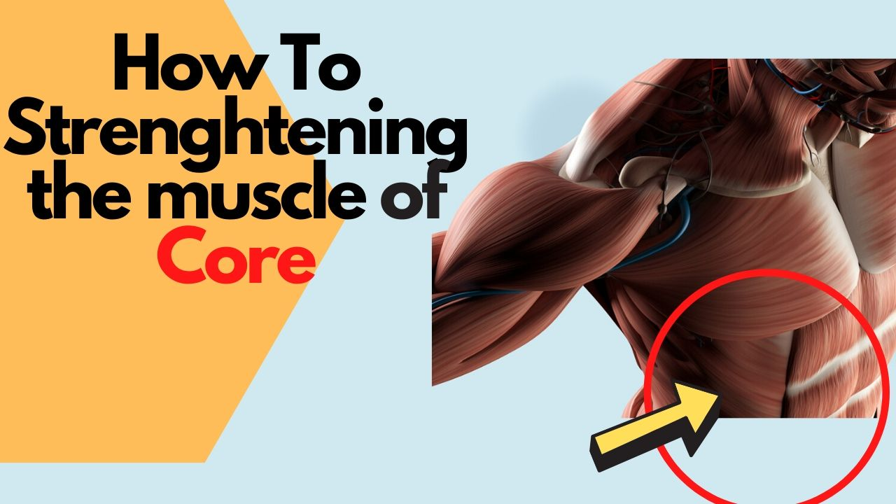 How to Strenghtening the muscle of Core