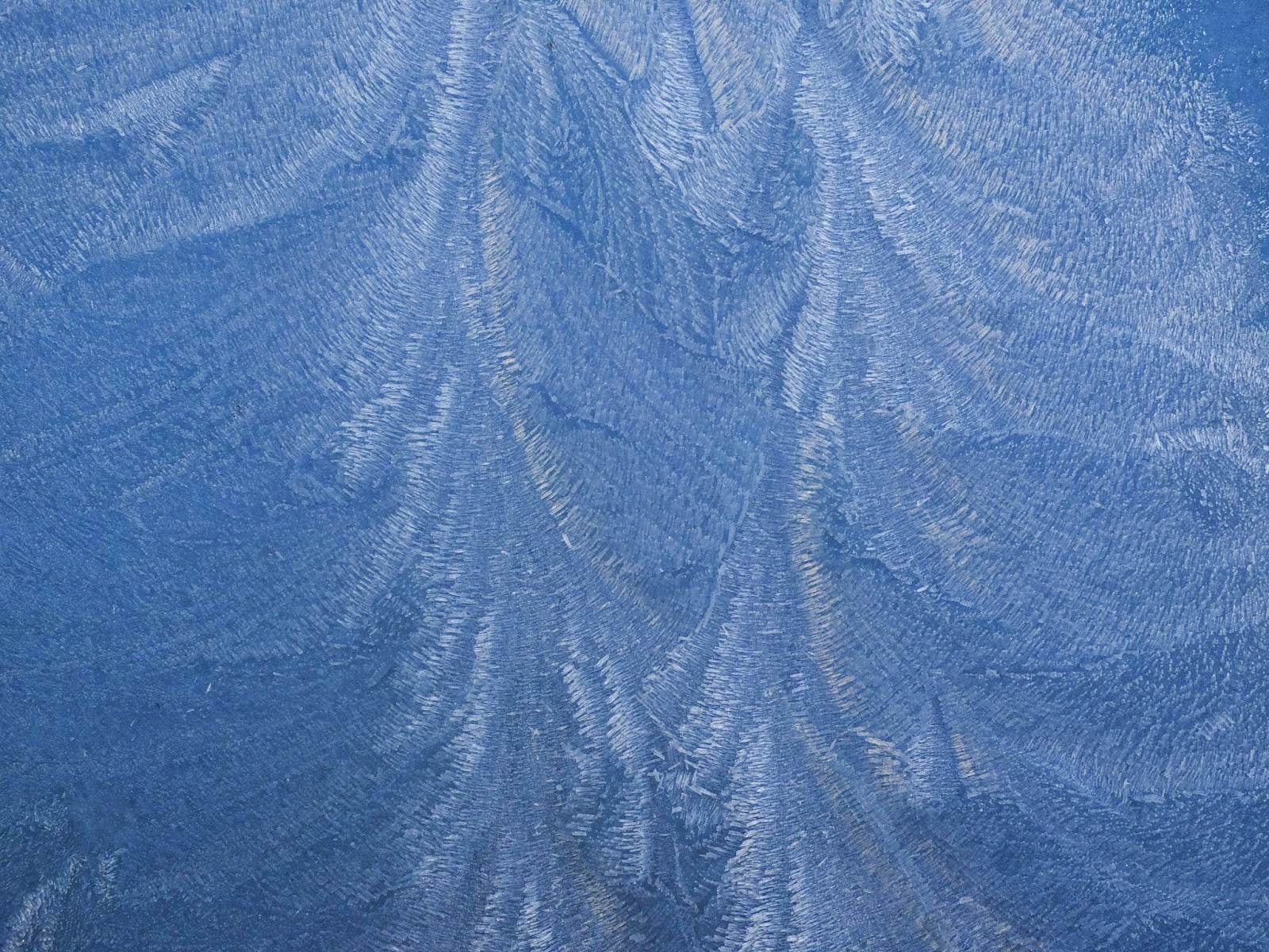 Mother's Nature design of frost on glass.