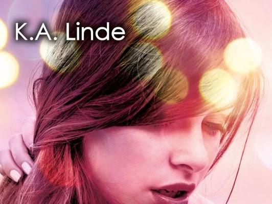 Non ho scelto di amarti di K.A. Linde | Presentazione