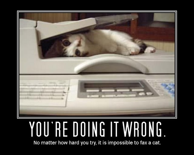 It's easier to fax a picture than the actual cat.