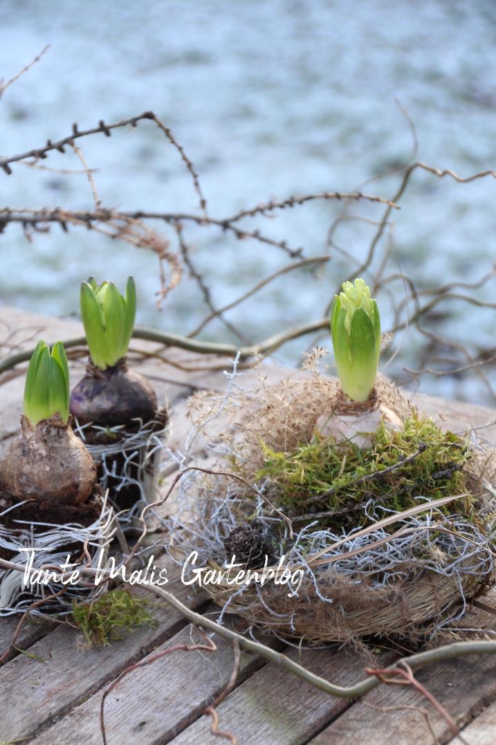Nest aus Gras und Zweigen selber machen