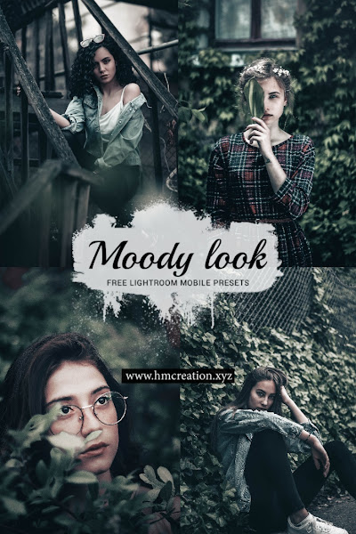 Moody-look-lightroom-mobile-presets-and-lightroom-presets