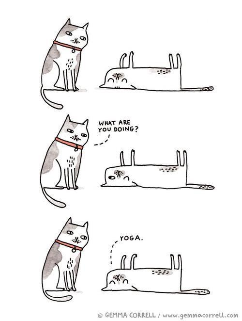 Yoga Cartoons ~ Funny Joke Pictures