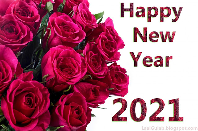 Red roses Happy New Year 2020 HD Wallpaper