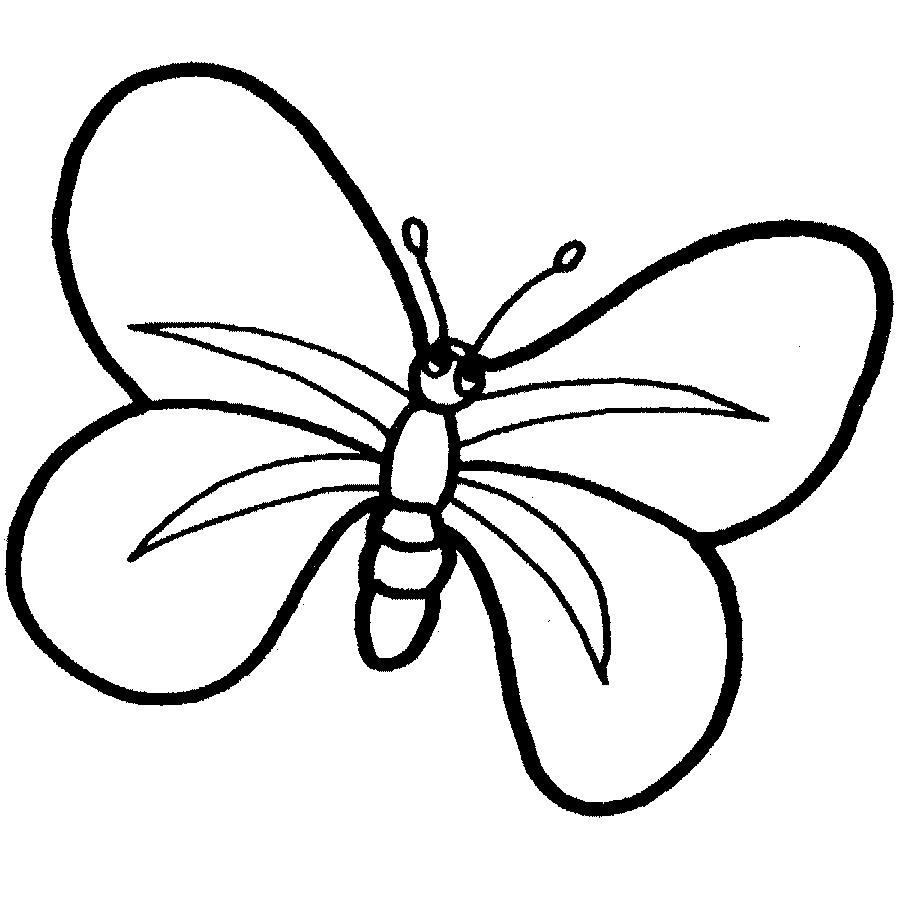 Maestra de infantil animales salvajes para colorear - Dessin petit papillon ...