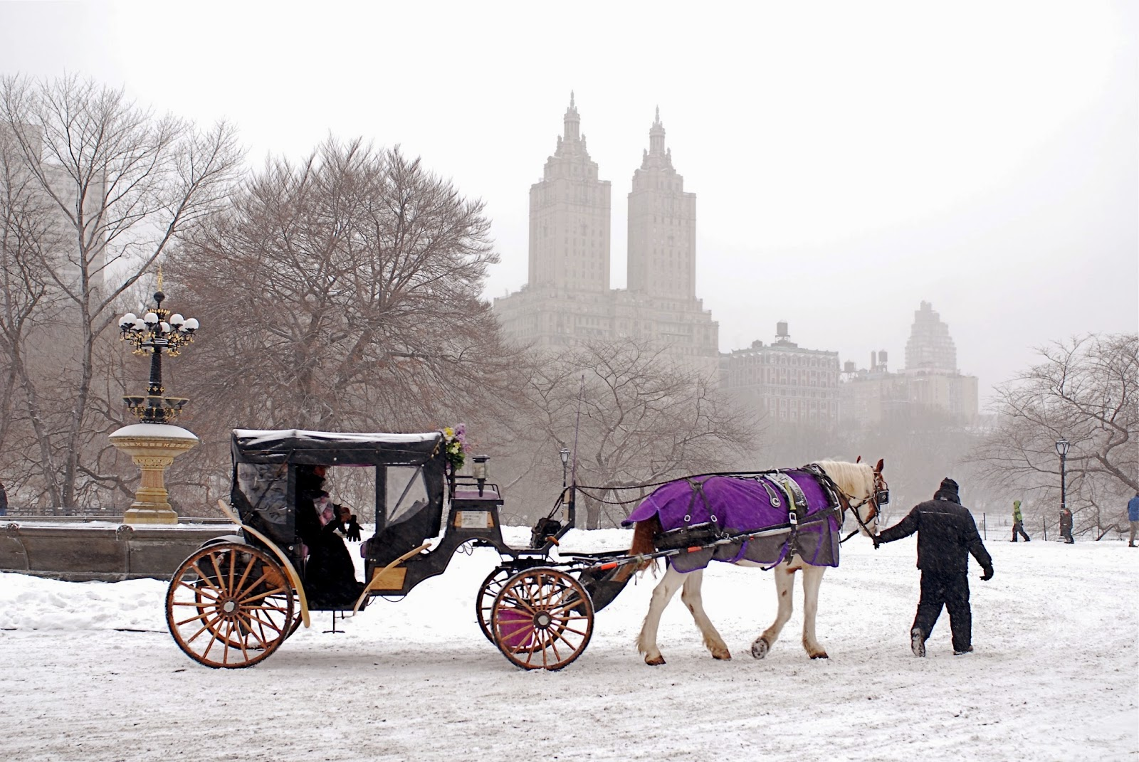 nyc nyc iconic horse drawn carriage rides in central park. Black Bedroom Furniture Sets. Home Design Ideas