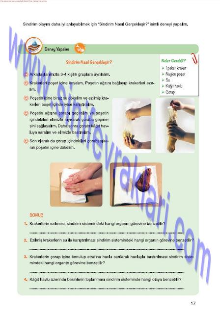 7. Sınıf Fen Bilimleri Mevsim Yayınları Ders Kitabı Cevapları Sayfa 17