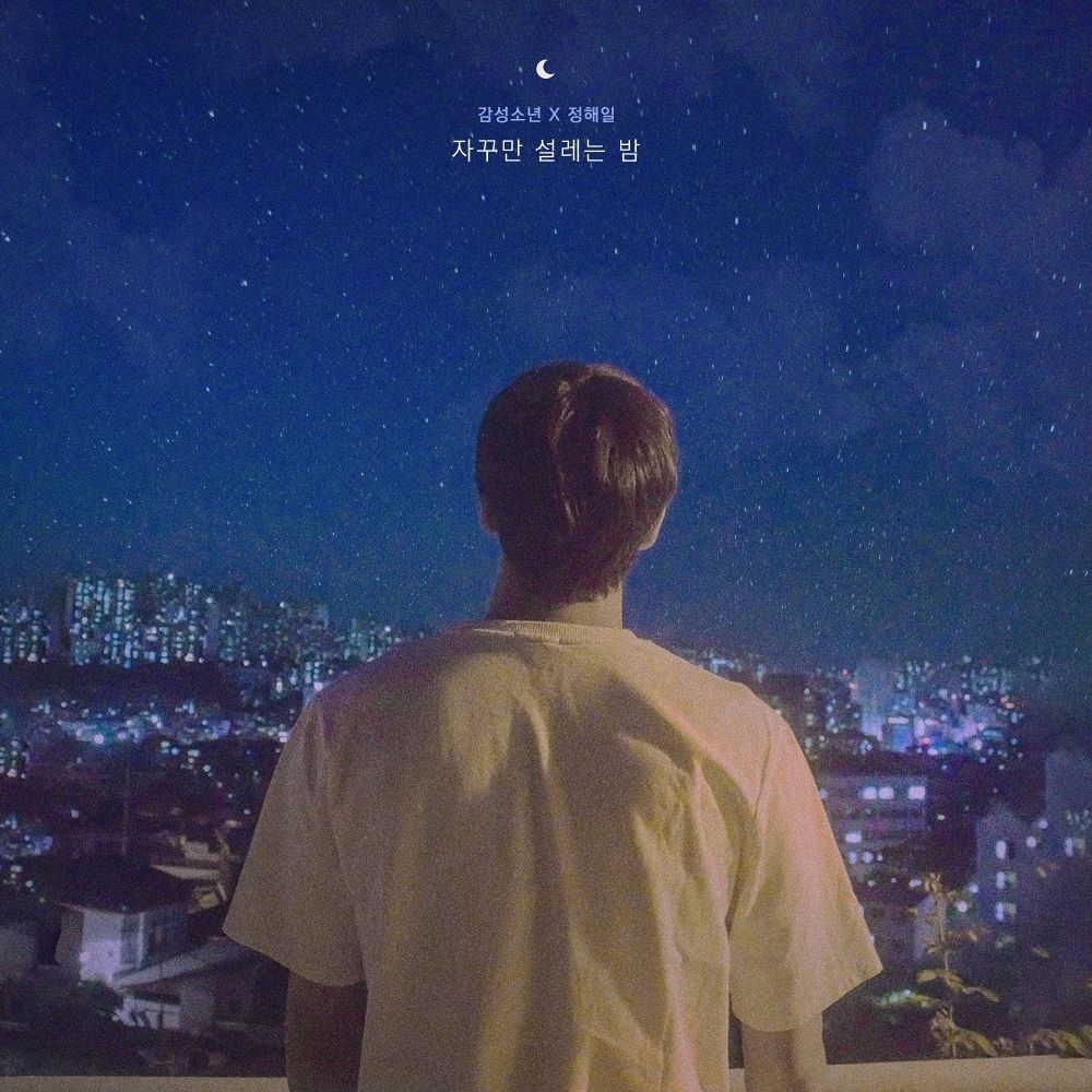 Sentimental Boy, Jeong Hae Il – constant flutter night – Single