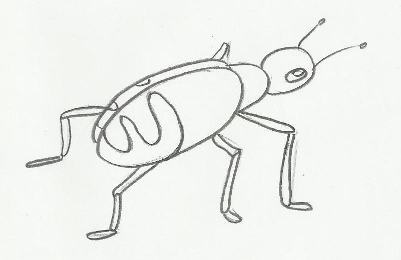Desenho De Barata Para Pintar