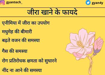 Benefits of cumin seeds in hindi