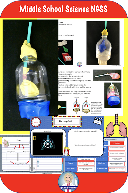 Respiratory System Distance Learning Unit NGSS MS-LS1-3 and Utah SEEd 7.3.3