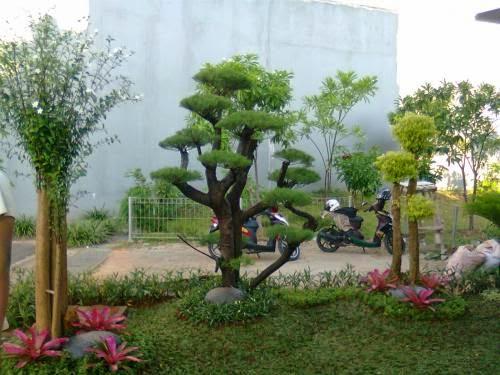 http://tukangtamankaryaalam.blogspot.com/2014/12/jasa-tukang-taman.html