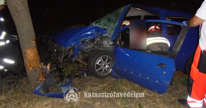 Fának csapódott egy autó Doboz és Gerla között
