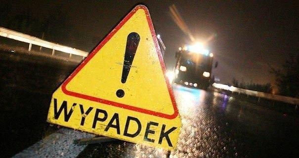Zderzenie auta ciężarowego z sarnami w Pułankach