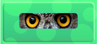 Guess the Animal by its Eyes Quiz Answers