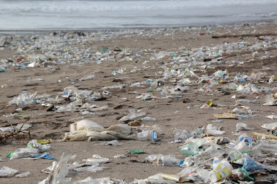 Plastic garbage on the banks of rivers and oceans