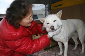 震災で不明の愛犬ジャキ9ヵ月半ぶりに涙の再会