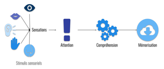 La Psychologie du Travail et des Organisation à l'ère des compétences