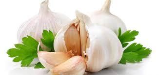 لن تصدق تأثير أكل الثوم على حياتك - ستجعلك تحبه رغم رائحته!