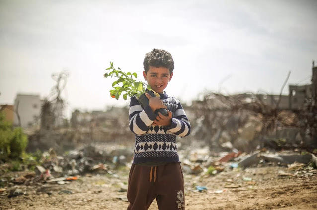 Palestine kids 43