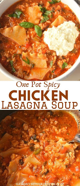 one pot spicy chicken lasagna soup