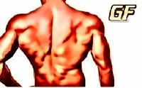 cara membentuk otot punggung