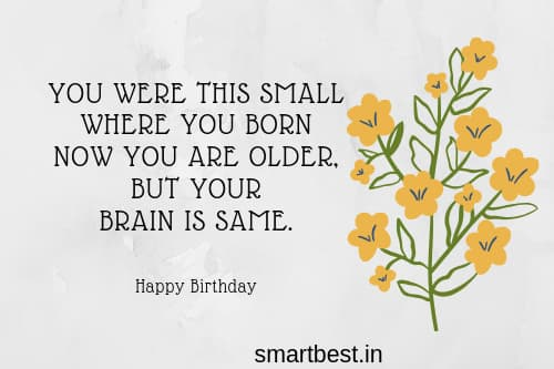 Funny Birthday Wishes Quote Messages Pictures Card And Gift For Your Love