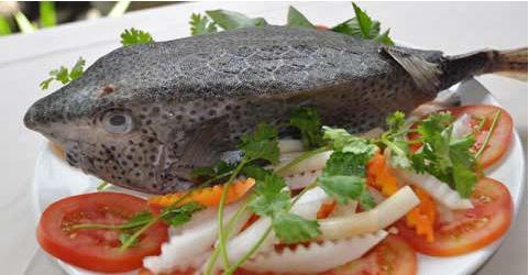 Món ăn chế biến từ cá của Mộc Thạch 4.3 Món ăn làm từ Mực