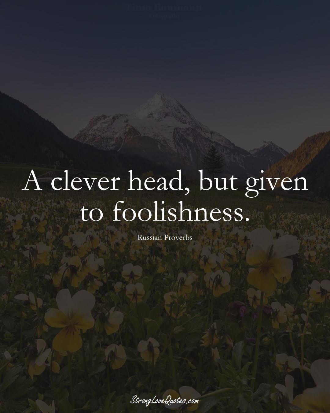 A clever head, but given to foolishness. (Russian Sayings);  #AsianSayings