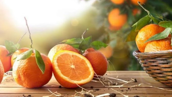 Nutrition Facts And Health Benefits Of An Orange