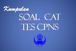 100 Contoh Soal CAT CPNS 2018 dan Pembahasan Pdf