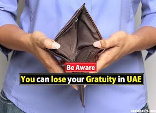 Gratuity in UAE, End of service calculator, Gratuity calculator UAE