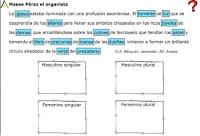 http://www.juntadeandalucia.es/averroes/centros-tic/41009470/helvia/aula/archivos/repositorio/0/58/html/datos/01_Lengua/actividades/U05/0504.htm