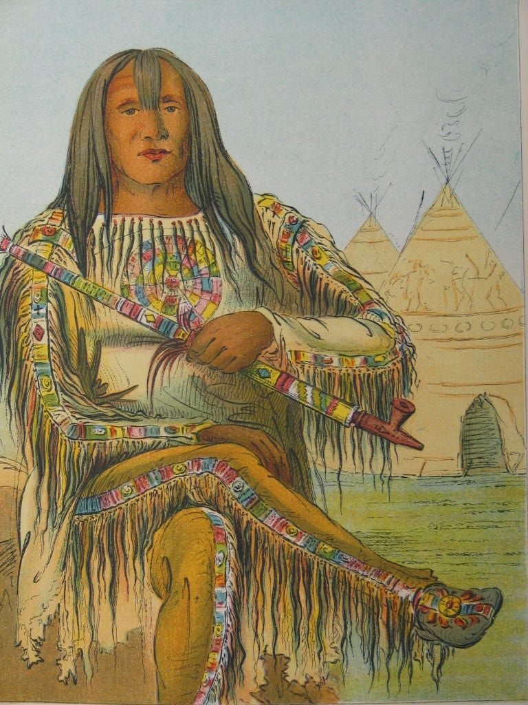 blackfoot women The blackfoot confederacy the women processed the buffalo, preparing dried meat, and combining it for nutrition and flavor with dried fruits into pemmican.