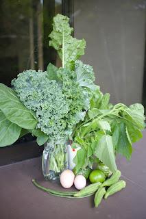chard, kale, vegetables, eggs Puriscal
