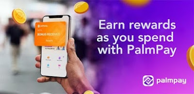 HOW TO EARN MONEY FROM HOME VIA PALM PAY