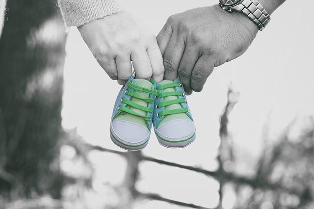 perkembangan janin trimester kedua, pertumbuhan janin trimester kedua, janin bayi trimester kedua
