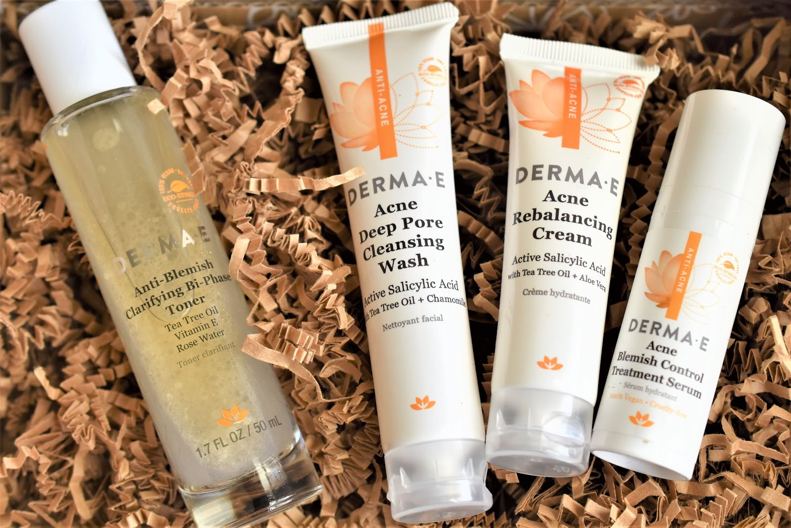 DERMA-E Anti-Acne Skincare Products