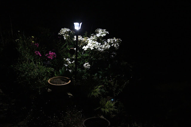 Solar Lamp Post in our back garden