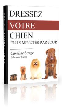 Découvrez le système d'éducation de chiens le plus facile et le plus efficace, disponible actuellement sur Internet.
