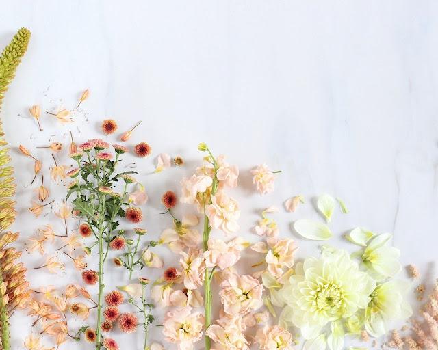 Aesthetic-Flower-Mobile-Wallpaper-Ultra-HD