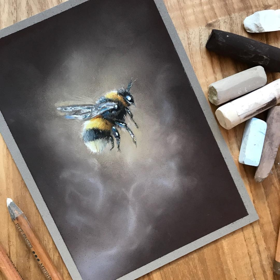 05-Bumblebee-Paul-Miller-Wildlife-and-Domestic-Animal-Drawings-www-designstack-co