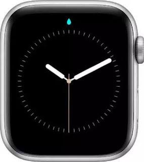 Arti Icon dan Simbol di Apple Watch-12