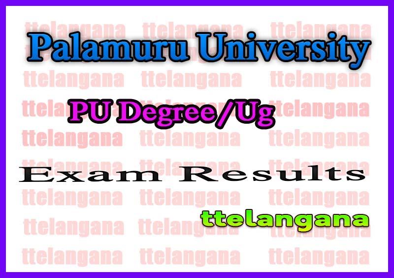 Palamuru University Degree 1st 2nd 3rd year Exam Results